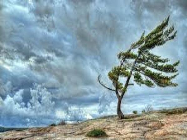 Tổng hợp phân tích ý nghĩa giấc mơ thấy giông bão