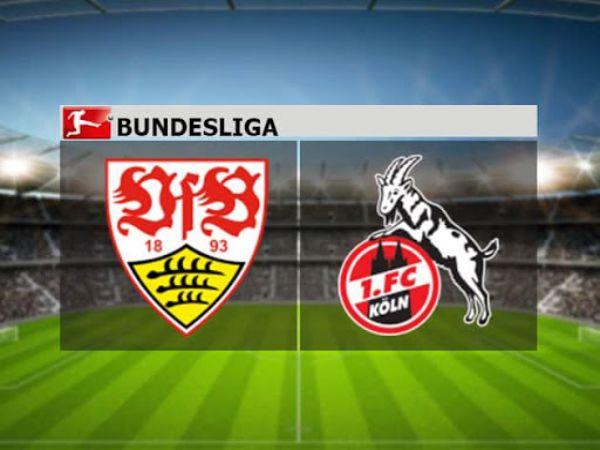Nhận định, soi kèo Stuttgart vs Cologne, 01h30 ngày 24/10 - VĐQG Đức
